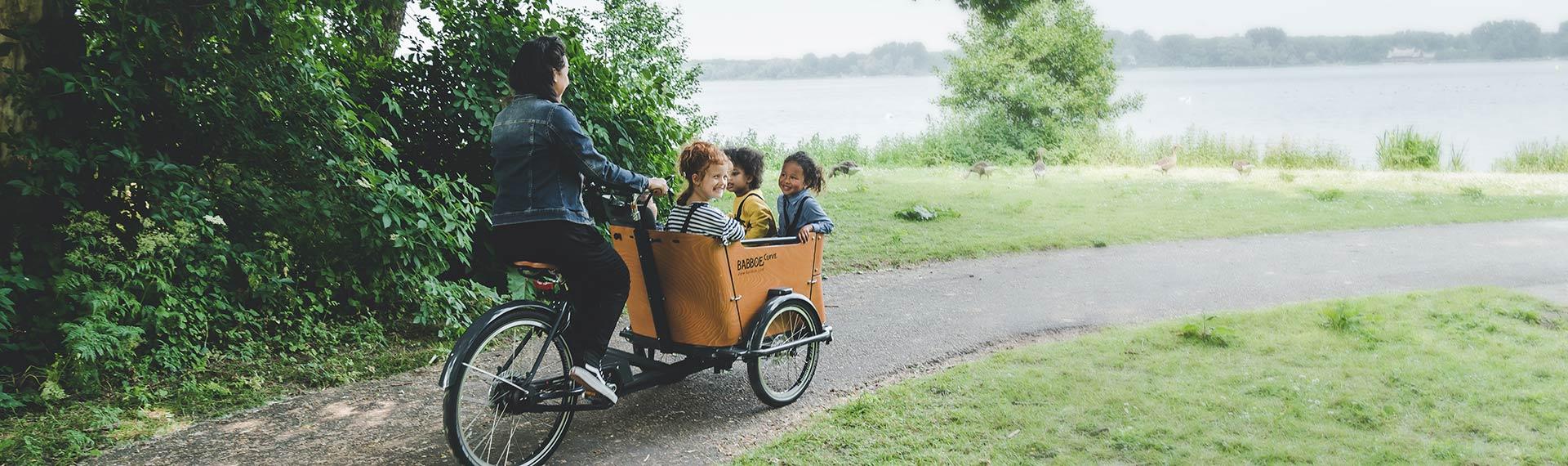 Non-electric cargo bike