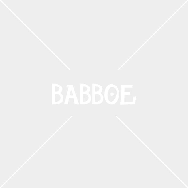 Babboe bakfiets in de Sneeuw